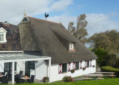 Zwarte haan Jabikspaad Go Camino Friesland