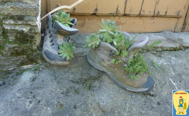 Onderhoud van uw wandelschoenen