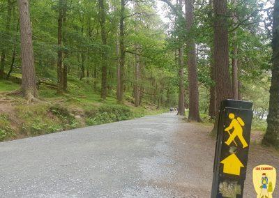 Celtic Camino